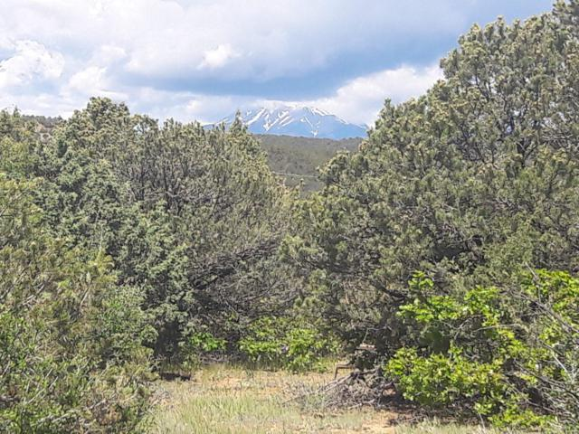 Lot 45 Ponderosa Hills, Trinidad, CO 81082 (MLS #19-605) :: Big Frontier Group of Bachman & Associates