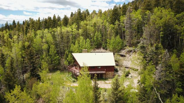 23880 Co. Rd. 46, Aguilar, CO 81020 (MLS #19-606) :: Big Frontier Group of Bachman & Associates