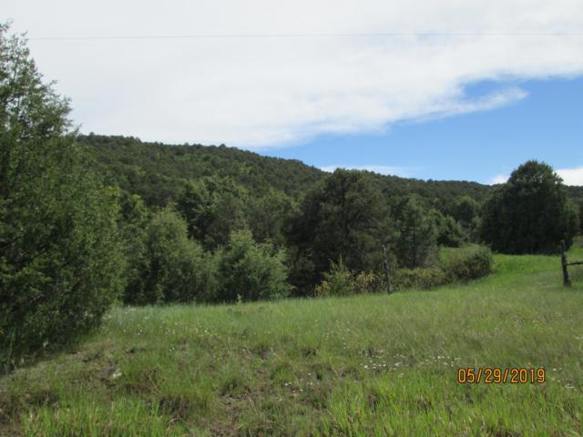 Fisher Peak Ranch Lot 10 & 11, Trinidad, CO 81082 (MLS #19-62) :: Big Frontier Group of Bachman & Associates
