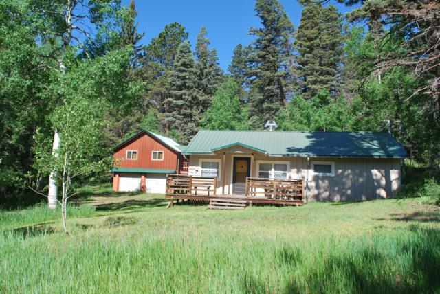 31 Black Bear Rd, Cuchara, CO 81055 (MLS #19-652) :: Big Frontier Group of Bachman & Associates