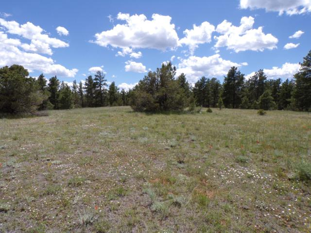 Lot 95 Spruce Circle, Weston, CO 81091 (MLS #19-665) :: Big Frontier Group of Bachman & Associates