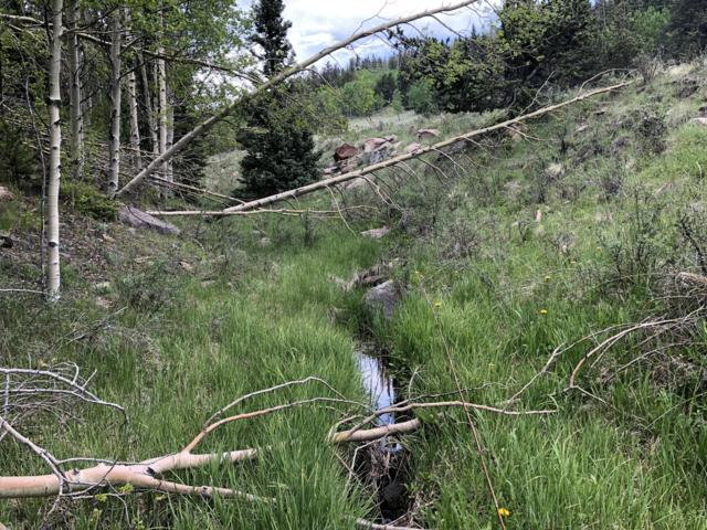 TBD Meadow Divide Rd, Gardner, CO 81040 (MLS #19-700) :: Big Frontier Group of Bachman & Associates