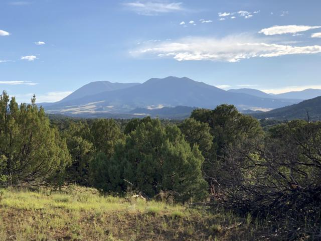 Parcel 31 Major Ranch Phase #2, Walsenburg, CO 81089 (MLS #19-701) :: Big Frontier Group of Bachman & Associates