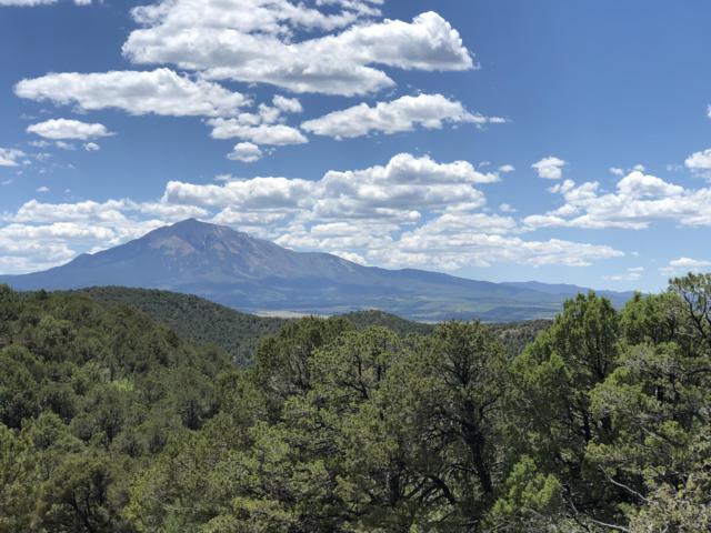 Parcel 42 Blackhawk Ranch Fil #3, Walsenburg, CO 81089 (MLS #19-706) :: Bachman & Associates