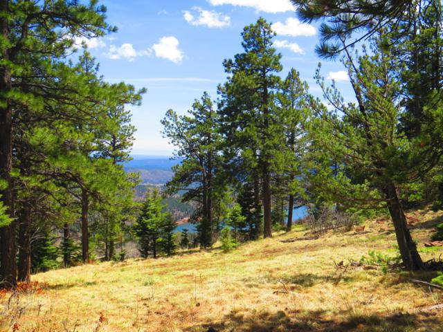 TBD Elk Ridge Trail Parcel 5, Stonewall, CO 81091 (MLS #19-710) :: Big Frontier Group of Bachman & Associates