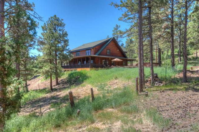 33440 Alpine Meadows Drive, Trinidad, CO 81082 (MLS #19-711) :: Big Frontier Group of Bachman & Associates