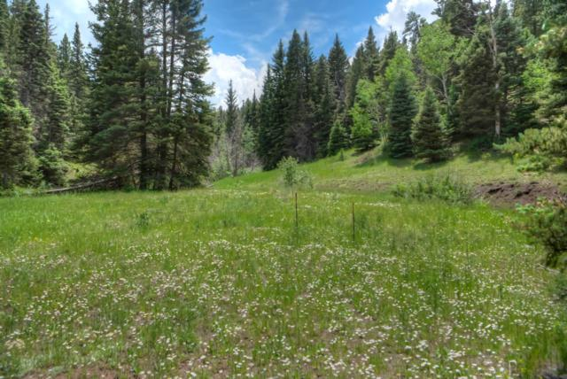 TBD Private Road, Gardner, CO 81040 (MLS #19-742) :: Big Frontier Group of Bachman & Associates