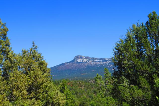 340 Mountain Meadow Overlook D3, Trinidad, CO 81082 (MLS #19-755) :: Big Frontier Group of Bachman & Associates