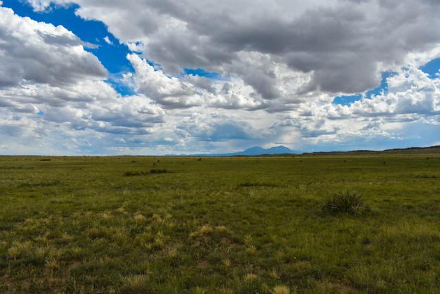 Lot 128 Turkey Ridge Ranch, Walsenburg, CO 81089 (MLS #19-756) :: Big Frontier Group of Bachman & Associates