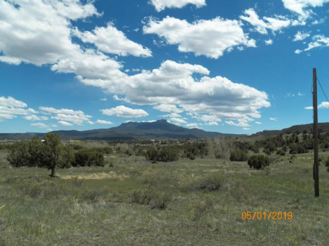 TBD Co. Rd. 69.8, Trinidad, CO 81082 (MLS #19-761) :: Big Frontier Group of Bachman & Associates