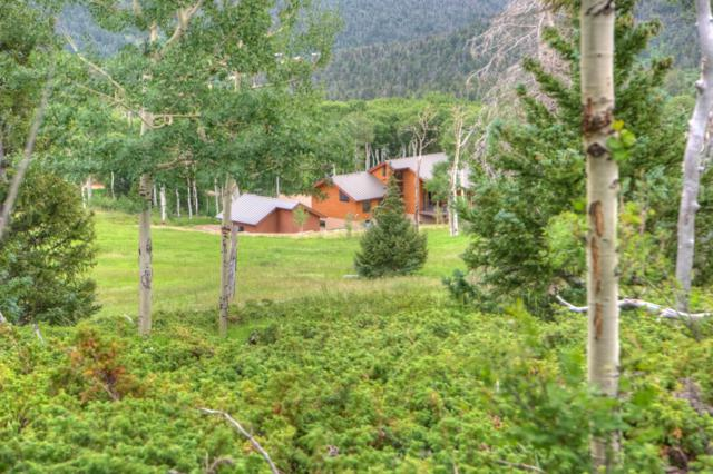 217 Baker Creek Ct, Cuchara, CO 81055 (MLS #19-765) :: Big Frontier Group of Bachman & Associates