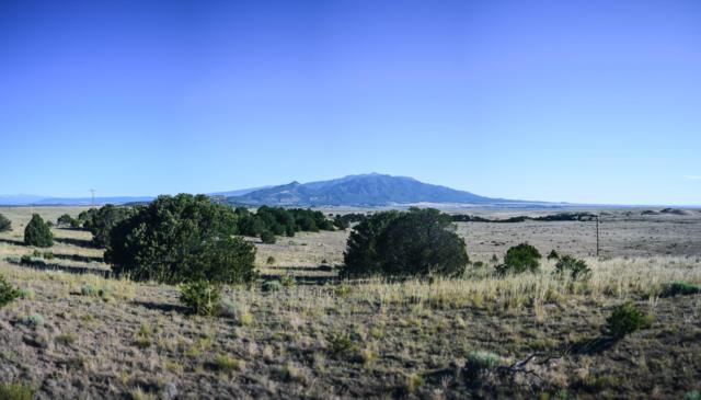 Ketchum Rd #35, Walsenburg, CO 81089 (MLS #19-771) :: Big Frontier Group of Bachman & Associates