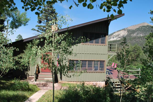 256 Black Bear Rd, Cuchara, CO 81055 (MLS #19-772) :: Big Frontier Group of Bachman & Associates