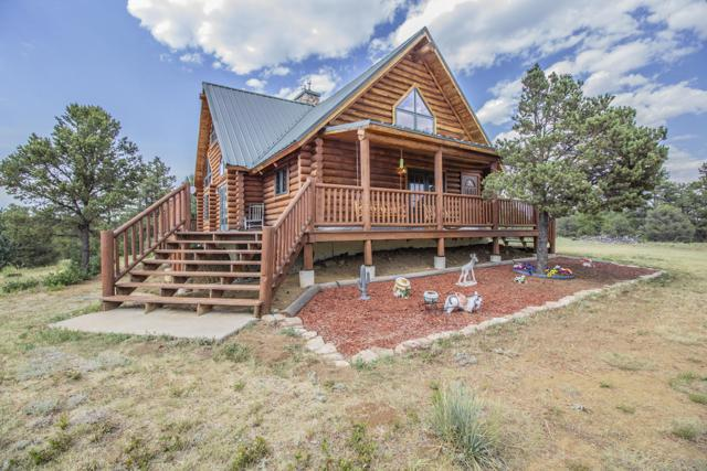 24080 Elk Trail, Aguilar, CO 81020 (MLS #19-776) :: Big Frontier Group of Bachman & Associates