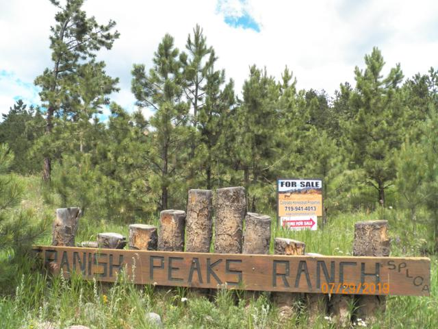 TBD Mt. Wilson, Aguilar, CO 81020 (MLS #19-822) :: Big Frontier Group of Bachman & Associates
