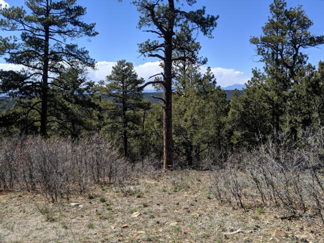 TBD Timber Park Drive Lot D77, Trinidad, CO 81082 (MLS #19-854) :: Big Frontier Group of Bachman & Associates