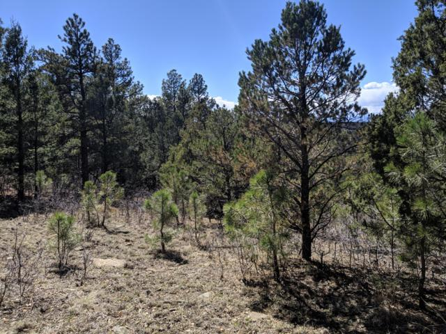 TBD Timber Park Drive Lot D78, Trinidad, CO 81082 (MLS #19-855) :: Big Frontier Group of Bachman & Associates