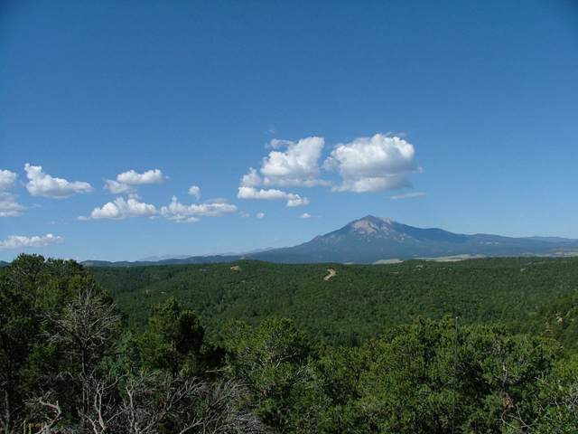 TBD Spanish Peaks Drive #28, Aguilar, CO 81020 (MLS #19-909) :: Big Frontier Group of Bachman & Associates