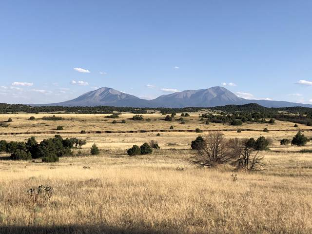 Parcel 13 Majors Ranch, Walsenburg, CO 81089 (MLS #19-919) :: Big Frontier Group of Bachman & Associates