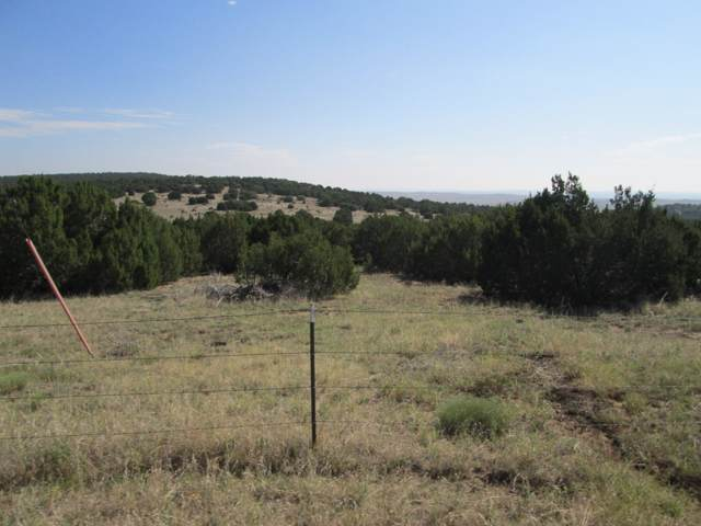 59 Filing 4 Silver Spurs Ranch, Walsenburg, CO 81089 (MLS #19-922) :: Bachman & Associates