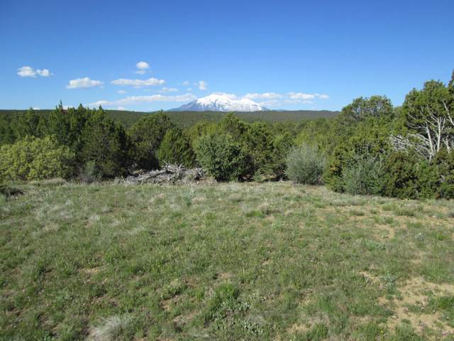 121 Silver Spurs Filing #5, Walsenburg, CO 81089 (MLS #19-924) :: Big Frontier Group of Bachman & Associates