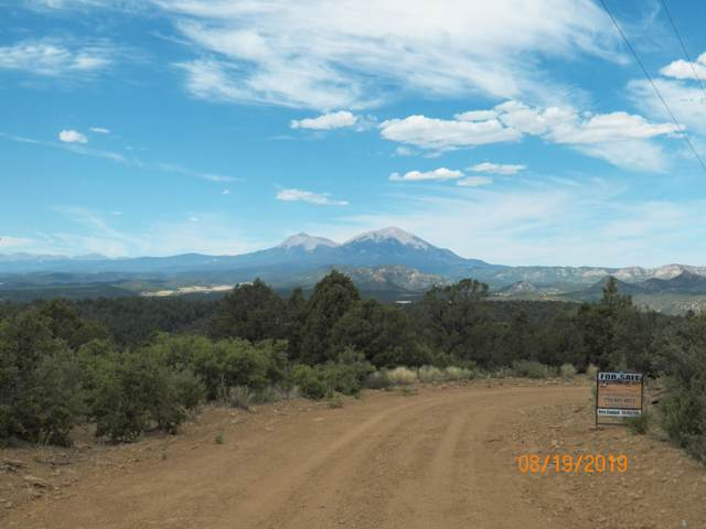 TBD Peak View Rd #47, Trinidad, CO 81082 (MLS #19-937) :: Big Frontier Group of Bachman & Associates