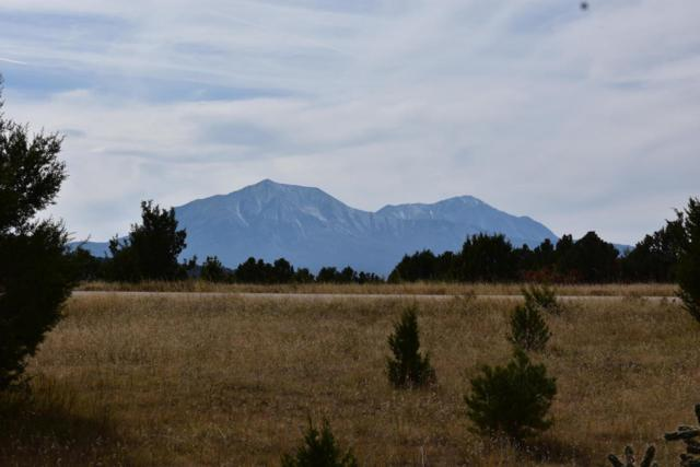 TBD Silver Spurs Rd, Walsenburg, CO  (MLS #19-98) :: Big Frontier Group of Bachman & Associates
