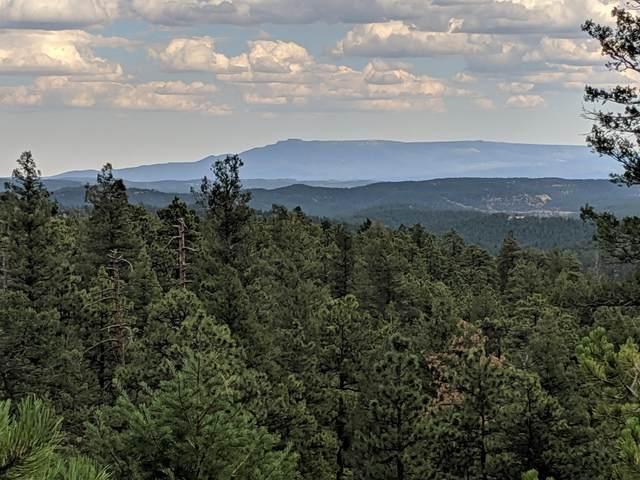 TBD North Fork Ranch Lot 68, Weston, CO 81091 (MLS #20-1035) :: Bachman & Associates