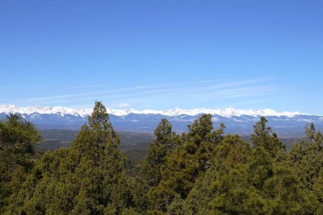 309 Mountain View C42, Trinidad, CO 81082 (MLS #20-1037) :: Bachman & Associates