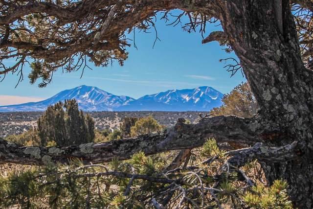 TBD 160 Acres Twin Lakes Ranches, Walsenburg, CO 81089 (MLS #20-104) :: Bachman & Associates