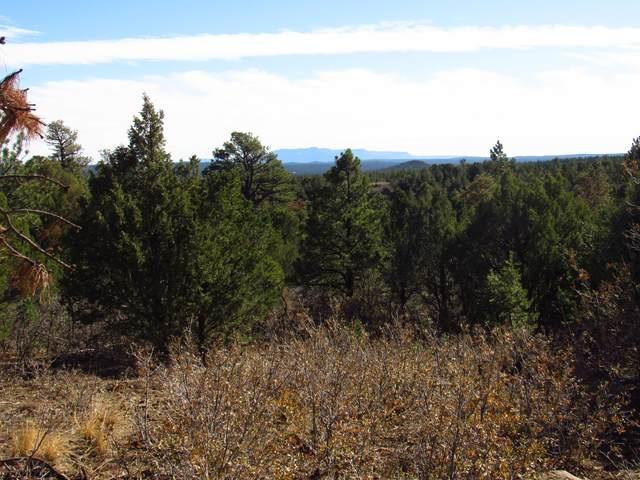 175 Blackhawk Ranch Filing #10, Aguilar, CO 81020 (MLS #20-1082) :: Bachman & Associates