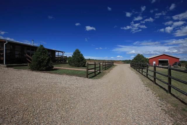 2360 Spanish Peaks Drive, Walsenburg, CO 81089 (MLS #20-1100) :: Bachman & Associates