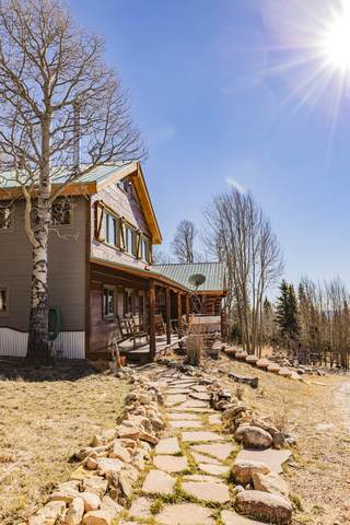 22577 Lillie Lane, Weston, CO 81091 (MLS #20-1118) :: Bachman & Associates