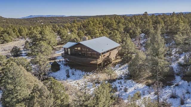 13290 Big Pine Ridge Rd, Weston, CO 81091 (MLS #20-1155) :: Bachman & Associates