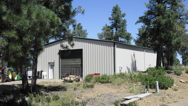 33039 Fawn Ct, Trinidad, CO 81082 (MLS #20-125) :: Bachman & Associates