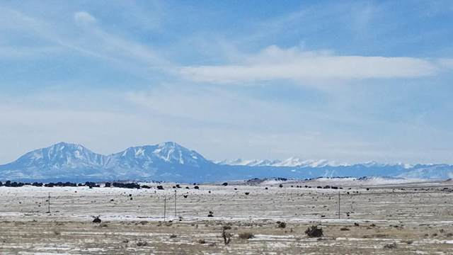 TBD Turkey Ridge Ranch, Filing #5 Lot 154, Walsenburg, CO 81089 (MLS #20-136) :: Bachman & Associates