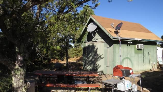 TBD Gonzales Canyon View # 166, Aguilar, CO  (MLS #20-176) :: Bachman & Associates