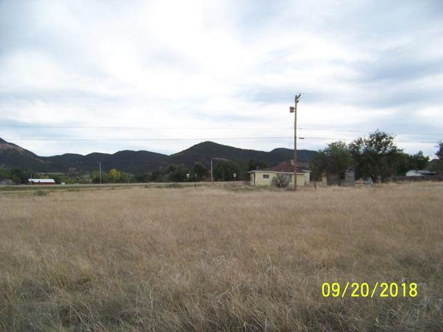 unassigned Maple St, Aguilar, CO 81020 (MLS #20-177) :: Bachman & Associates