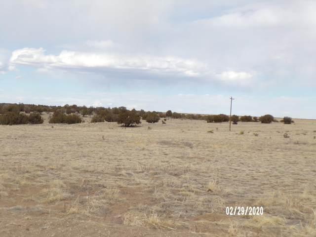 unassigned Las Animas Ranches, Model, CO 81020 (MLS #20-180) :: Bachman & Associates