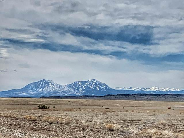 Lot 85 Turkey Ridge Ranch, Walsenburg, CO 81089 (MLS #20-205) :: Bachman & Associates