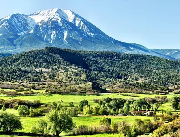 TBD Terrace Trail, LaVeta, CO 81055 (MLS #20-236) :: Bachman & Associates