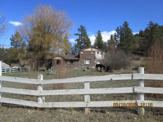 13724 County Rd 41.7, Weston, CO 81091 (MLS #20-255) :: Bachman & Associates