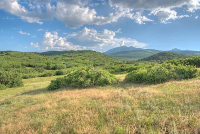 TBD Lot # 9-2A   Piney Ridge, LaVeta, CO 81055 (MLS #20-30) :: Big Frontier Group of Bachman & Associates