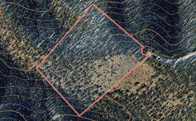 5556 Sangre De Cristo Ranches, Ft. Garland, CO 81133 (MLS #20-302) :: Bachman & Associates