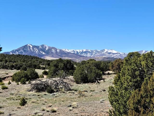 Black Hills Ranch #1 #192, Walsenburg, CO 81089 (MLS #20-308) :: Bachman & Associates