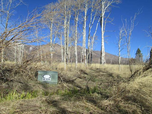 3 Blk 3 Paradise Acres, La Veta, CO 81055 (MLS #20-335) :: Bachman & Associates
