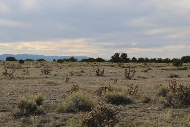 TBD Turkey Ridge Road, Walsenburg, CO 81089 (MLS #20-352) :: Bachman & Associates
