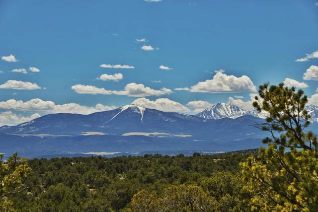 Lot 16 Milligan Ranch, Gardner, CO 81040 (MLS #20-353) :: Bachman & Associates