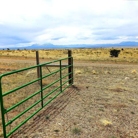 TBD Turkey Ridge Ranch Lot 144, Walsenburg, CO 81089 (MLS #20-355) :: Bachman & Associates