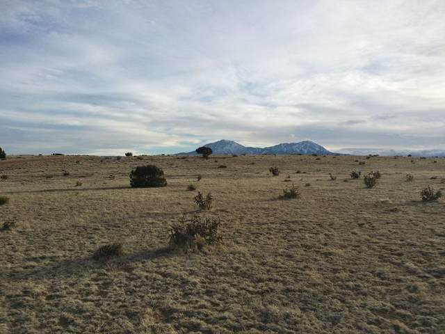Lot 500 Salida Dr., Rio Cucharas Lot 500, Walsenburg, CO 80189 (MLS #20-36) :: Big Frontier Group of Bachman & Associates